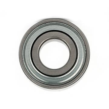 IKO Brand Linear Bushing Ball Bearing for SMT Machine and CNC Printer Lm6uu Lm8uu Lm10uu Lm12uu Bearing