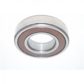 NSK 6204du 6204DDU Auto Ball Bearings 6202, 6204, 6206, 6208, 6210 Duucm
