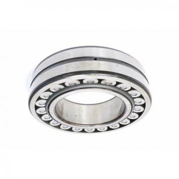 Auto Bearings All Kinds of Spherical Roller Bearing 22218 Mbw33/C3