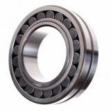 21319 22218 22320 23046 23144 23240 24044 24146 Ck/C Etvpb C3/Mc3w33/Cjw33c3/Cckj W33/EXW33K/2RS Sealed W33 Spherical Roller Bearings